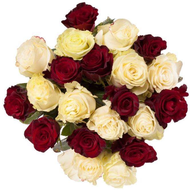 """Букет цветов из красных и нежнокремовых роз """"Премиум"""" (21 шт.) №113 с доставкой."""