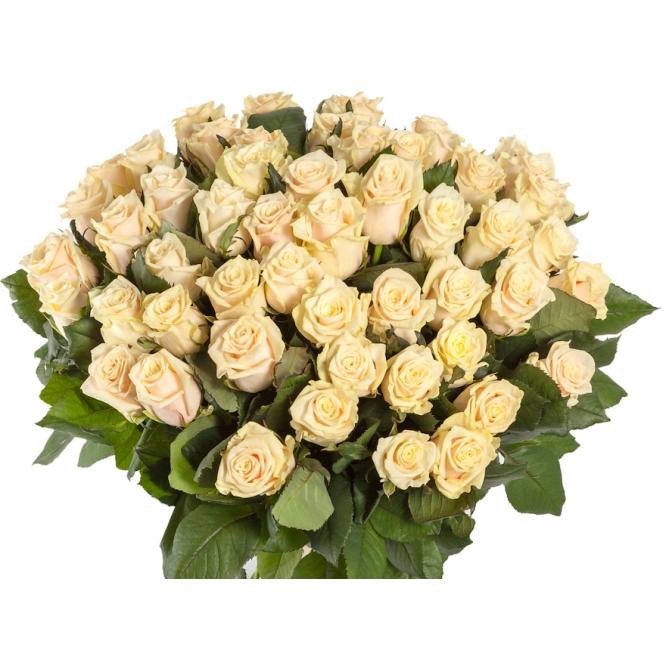 """Букет цветов из нежно-кремовых роз """"Талея"""" (51 шт.) №116 с доставкой."""