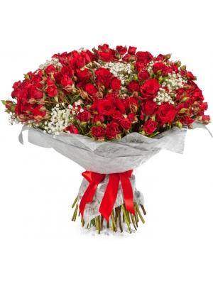 Букет цветов из красных кустовых роз (51 шт.) и гипсофилы №117 с доставкой.