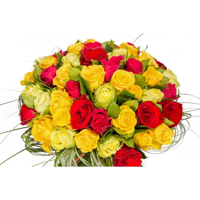 Букет цветов из разноцветных роз (51 шт.), салала и берграсса №123 с доставкой.