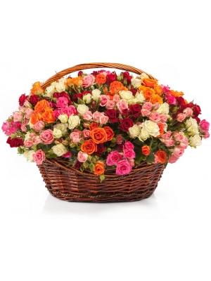 Букет-корзина из белых, красных, оранжевых и розовых кустовых роз (61 шт.) №94