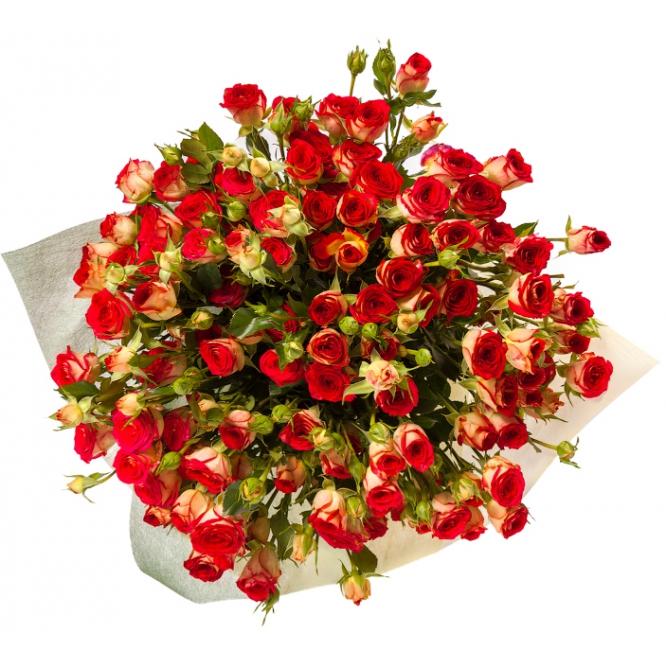 """Букет цветов из цветных кустовых роз """"Рубелла"""" (19 шт.) №135 с доставкой."""