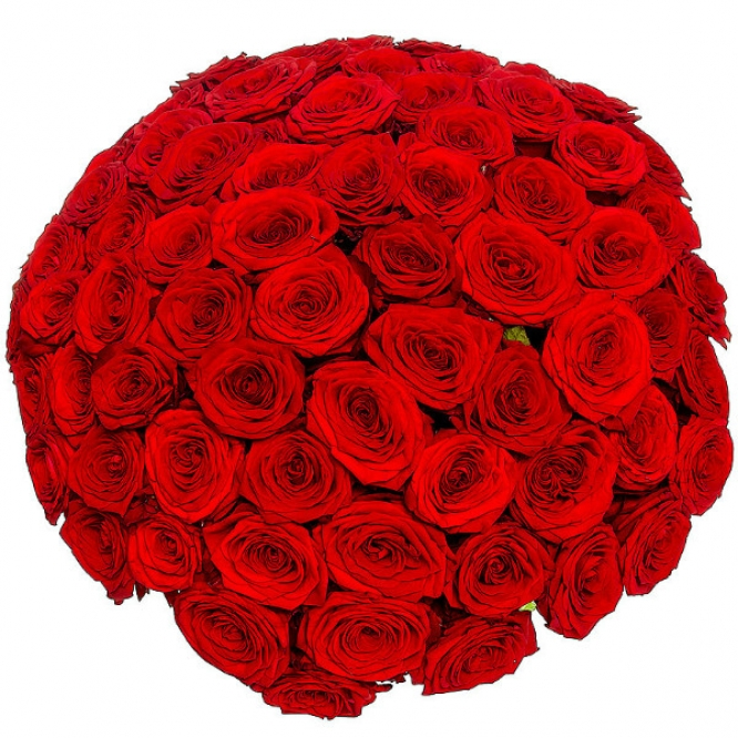 Букет цветов из красных роз (51 шт.) №11 с доставкой.