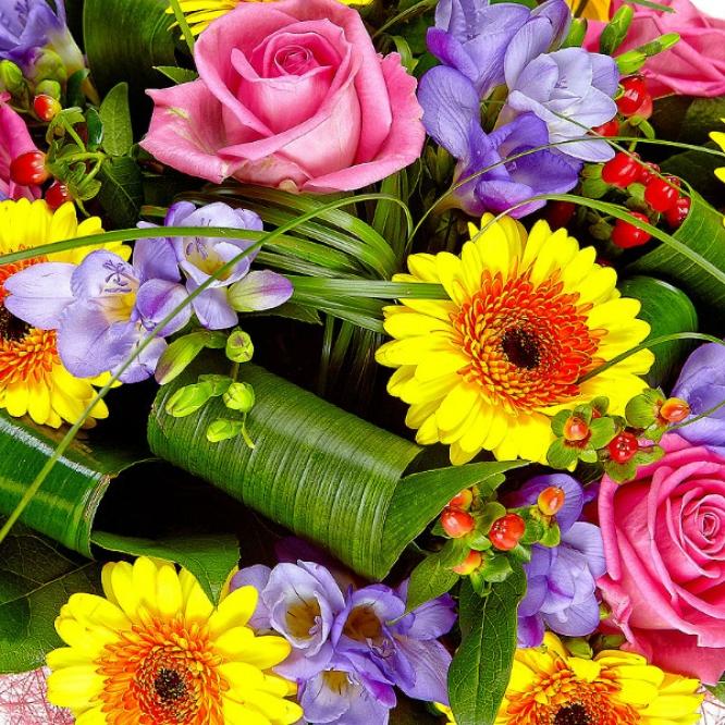 Букет цветов из голубой фрезии, желтой герберы, розовых роз и красного гиперикума  №3 с доставкой.