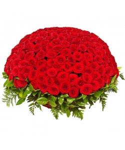 Букет-корзина из красных роз №20 (201 шт.)