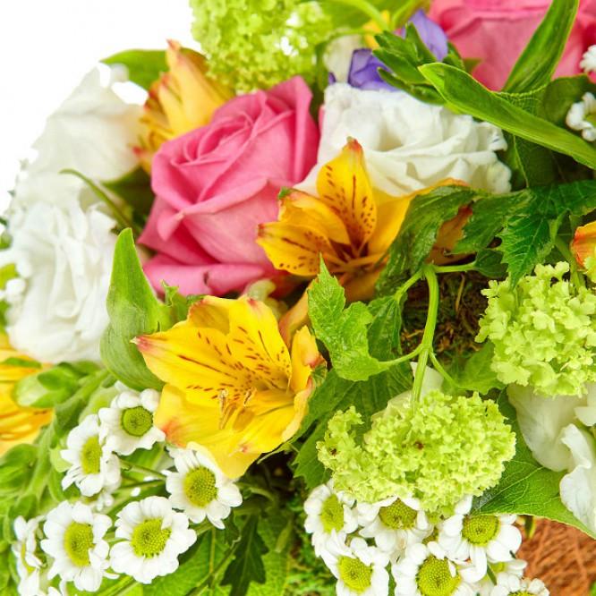 Букет-корзина из желтой альстромерии, белой хризантемы, голубых фрезий и розовых роз №8