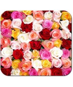 Свежайшие розы на любой вкус от 35 грн. с доставкой по Киеву. Звоните или пишите в Viber!