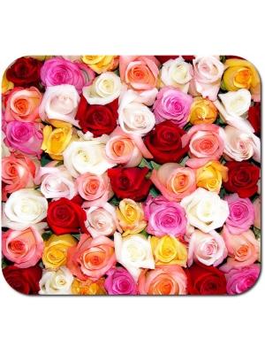 Свежайшие розы на любой вкус от 25 грн. с доставкой по Киеву. Звоните или пишите в Viber!