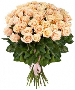 Букет цветов из нежнокремовых роз №7 (51 шт.) с доставкой.