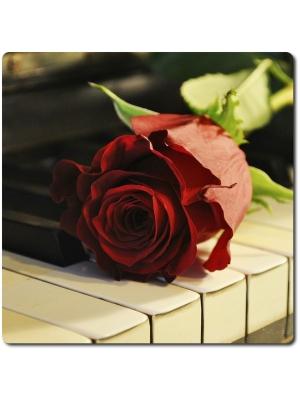 """Поштучно красные розы """"Престиж"""" (экстра класс, 70 сантиметров) с доставкой по Киеву."""