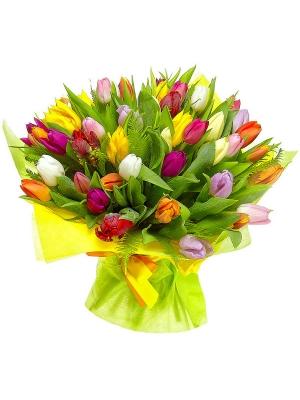 Букет цветов из разноцветных тюльпанов (51 шт.) и амбреллы №1 с доставкой.