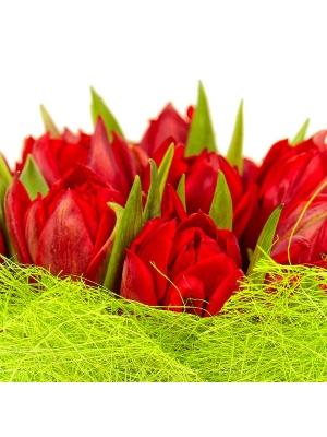 Букет цветов из красных тюльпанов (25 шт.) №18 с доставкой.