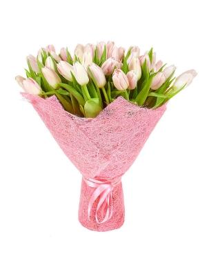 Букет цветов из розовых тюльпанов (51 шт.) №19 с доставкой.