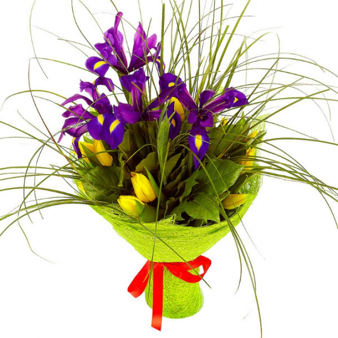 Букет цветов из желтых тюльпанов, синих ирисов, берграсса и салала №25 с доставкой.