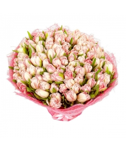 Букет цветов из светло-розовых тюльпанов (101 шт.) №26 с доставкой.