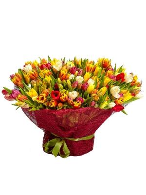 Букет цветов из разноцветных тюльпанов (201 шт.) №30 с доставкой.