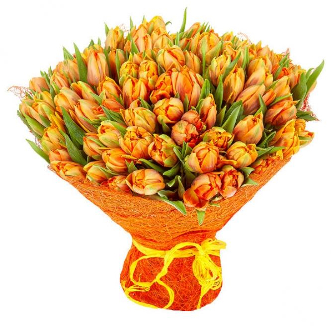 Букет цветов из рыжих (оранжевых) тюльпанов (101 шт.) №31 с доставкой.