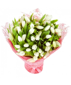 Букет цветов из белых тюльпанов (51 шт.) №39 с доставкой.
