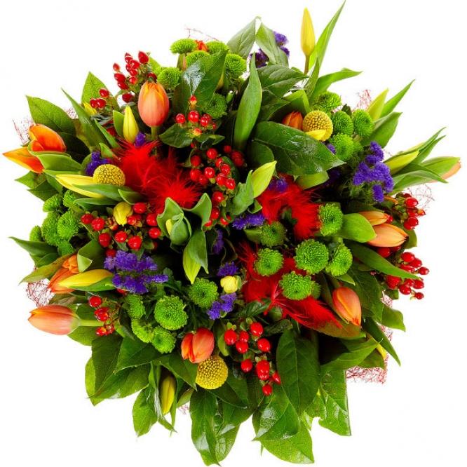 Букет цветов из разноцветных тюльпанов, зеленой хризантемы, желтой краспедии и гиперикума №44 с доставкой.