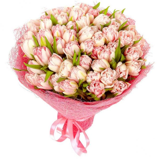 Букет цветов из светло-розовых тюльпанов (51 шт.) №49 с доставкой.