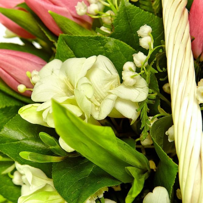 Букет-корзина из белой фрезии, ландышей, салала, амбреллы и розовых тюльпанов №59