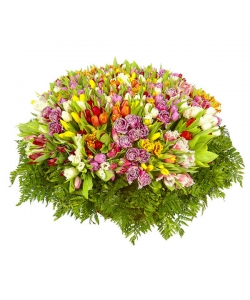Букет-корзина из разноцветных тюльпанов (501 шт.) №60
