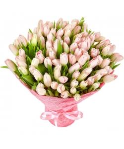 Букет цветов из розовых тюльпанов (101 шт.) №55 с доставкой.