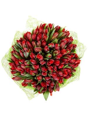 Букет цветов из красных тюльпанов (101 шт.) №60 с доставкой.