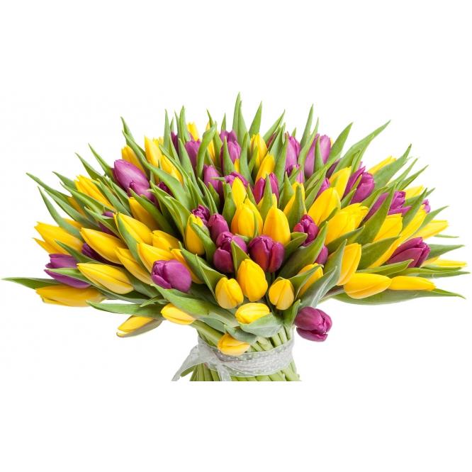 Букет цветов из желтых и фиолетовых тюльпанов (101 шт.) №64 с доставкой.