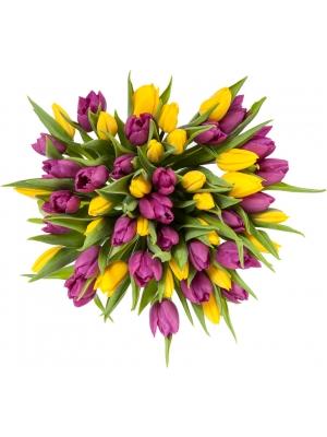 Букет цветов из желтых и фиолетовых тюльпанов (51 шт.) №65 с доставкой.