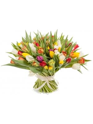 Букет цветов из разноцветных тюльпанов (101 шт.) №66 с доставкой.