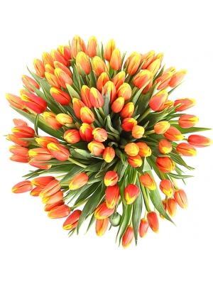 Букет цветов из рыжих (оранжевых) тюльпанов (101 шт.) №70 с доставкой.