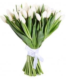 Букет цветов из белых тюльпанов (51 шт.) №71 с доставкой.