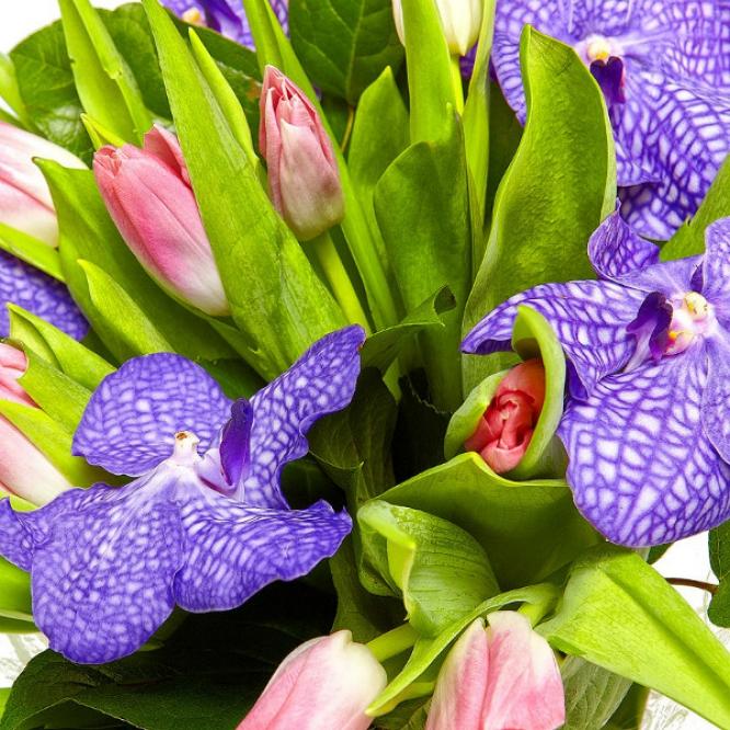"""Букет цветов из розовых тюльпанов, салала и синей орхидеи """"Ванда"""" №9 с доставкой."""