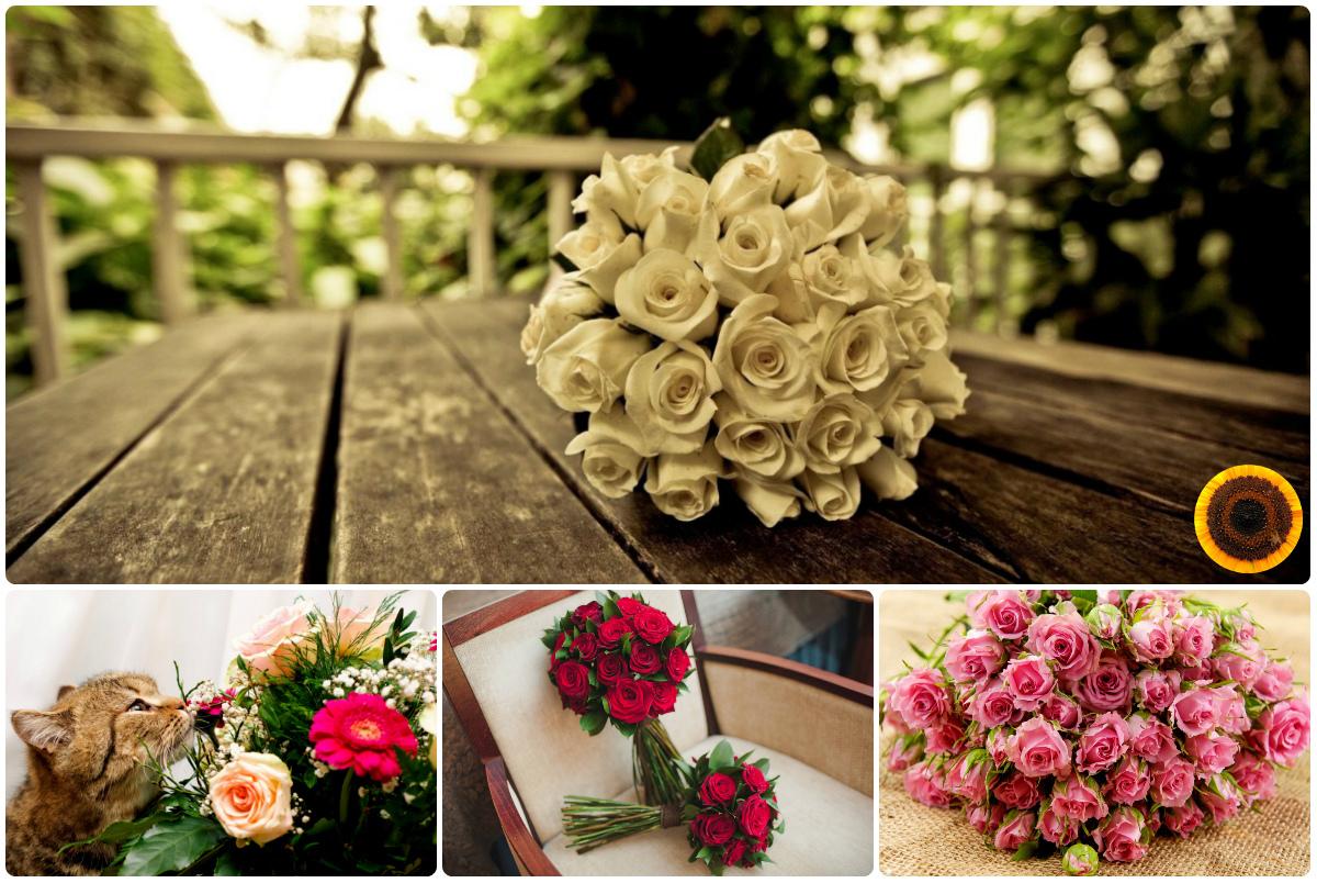 Купить розы поштучно в Киеве с доставкой по низкой цене. Заказать розы в Киеве. Быстрая доставка.