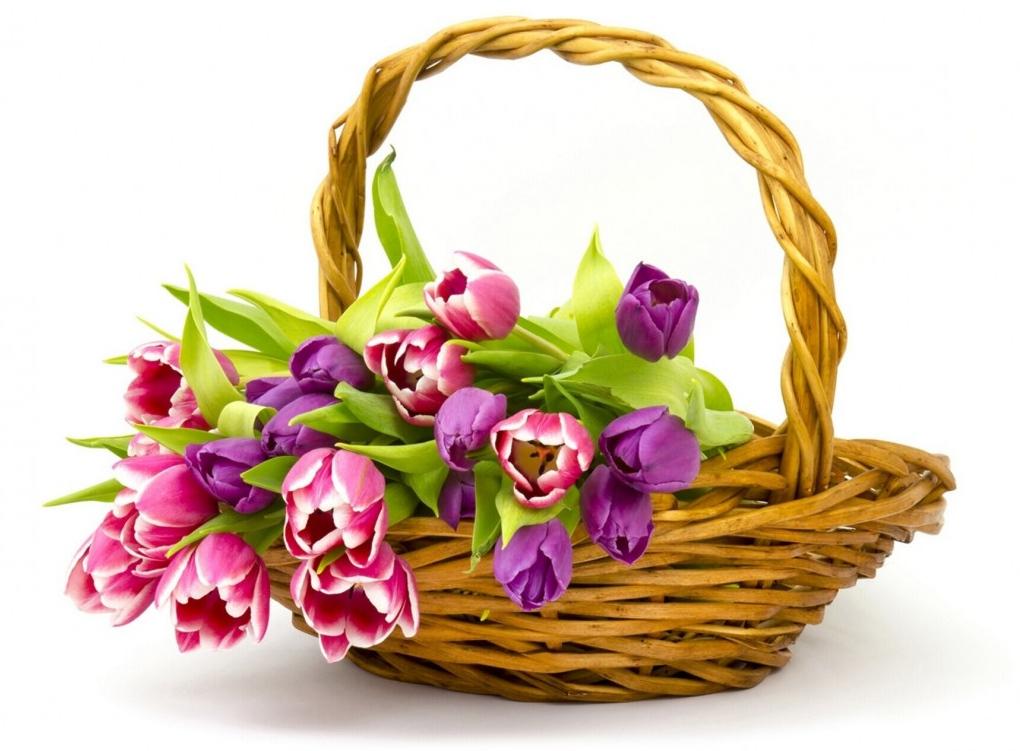 Купить букет из тюльпанов в Киеве.