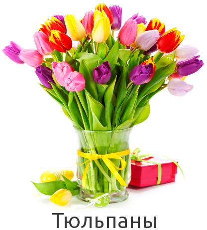 Купить тюльпаны  в Киеве по низкой цене с доставкой.